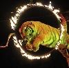 Цирки в Рыбинске